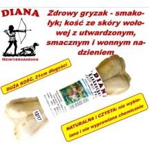 Kauknochen Pansen 21cm Diana 12x1szt Kość z żwacze